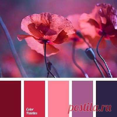 La combinación de los colores