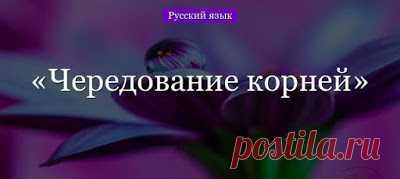 godaltar.orgcompronet: Однако основ