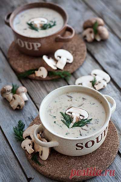 La crema-sopa fúngica.