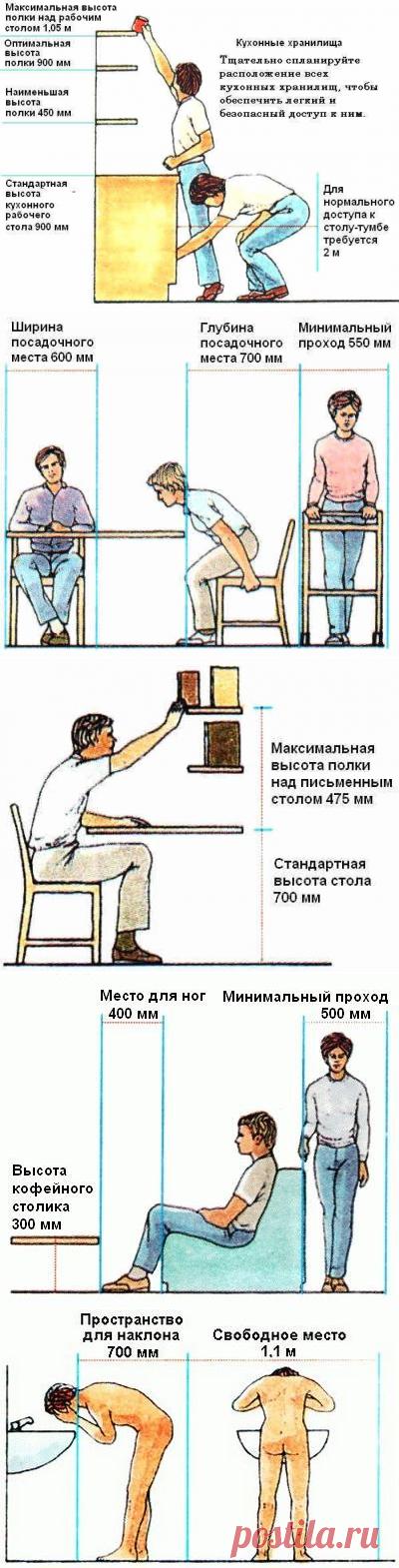 Эргономика в картинках - Самый полезный журнал