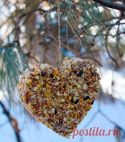 Любите птичек? Устройте для них праздник!
