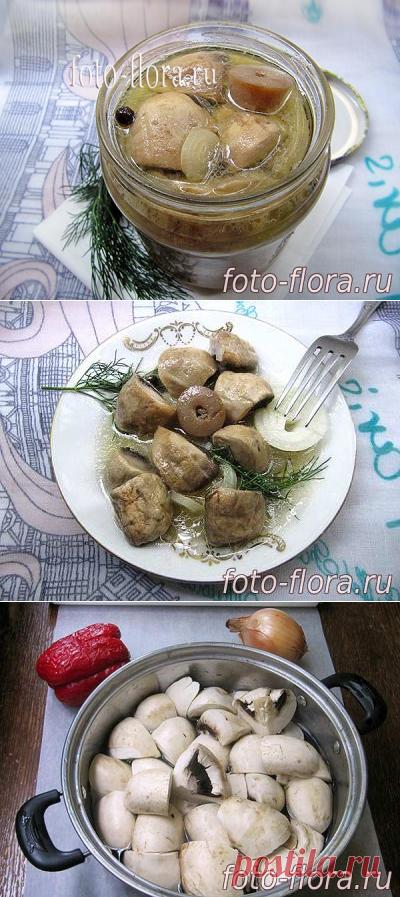 Рецепты маринованных шампиньонов быстрого приготовления