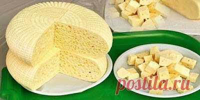 Полезные советы: Приготовление домашнего сыра