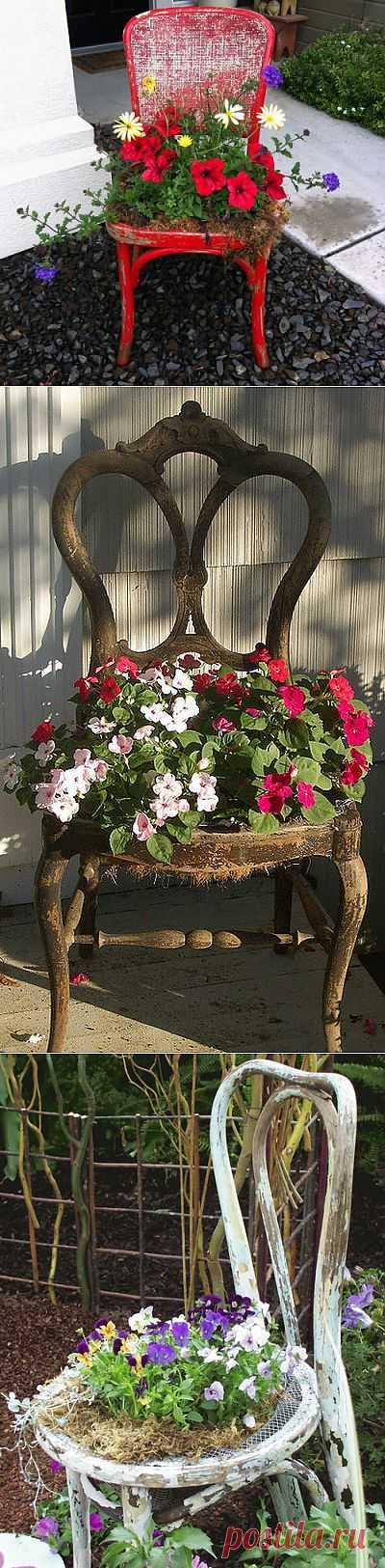 Красивые клумбы на даче из старых стульев — фото | My Milady