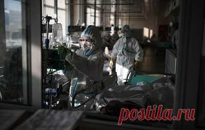 Эксперт: волна заболеваемости коронавирусом в России идет на спад. В Москве также наблюдается снижение уровня заболеваемости, отметил ведущий специалист Центра им. Гамалеи Федор Лисицын