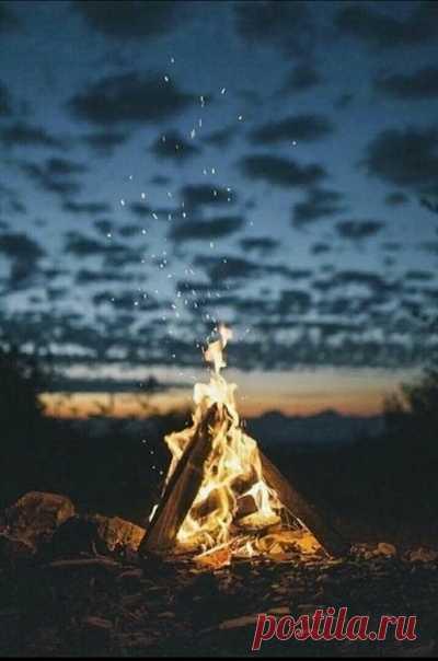 И в моей тишине со мною рядом были лишь звезды и лес... ⠀⠀⠀⠀⠀⠀⠀⠀⠀⠀⠀⠀⠀⠀⠀⠀⠀⠀⠀