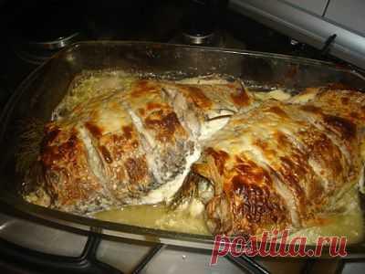 Карась запеченный в сметане : Рыбные блюда