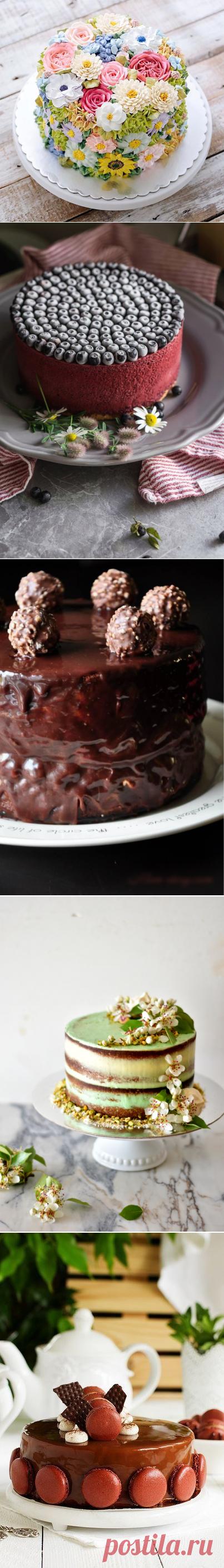 Изысканные торты — vellamonik