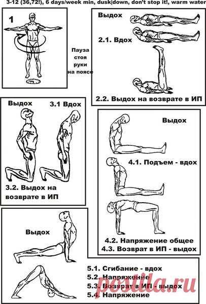 Пять тибетцев упражнения
