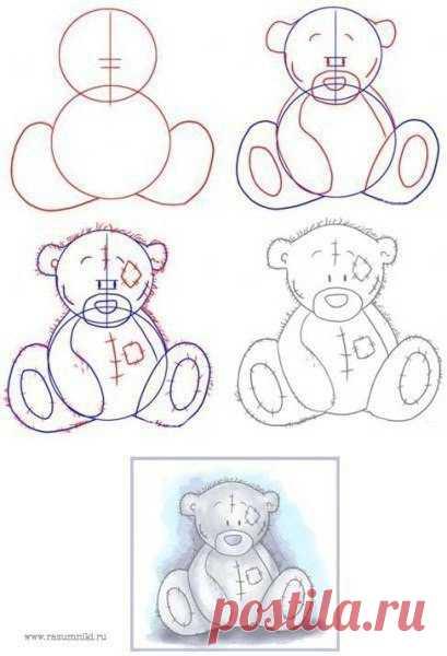 Учимся рисовать мишек.