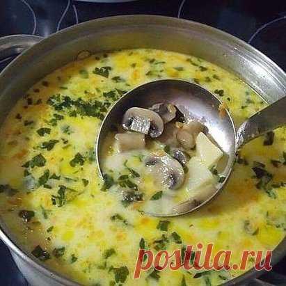 Самый вкусный грибной сливочный суп! Сочетание сливок, плавленого сыра и грибов — так вкусно, просто пальчики оближешь.  Ингредиенты: шампиньоны — 200 грамм; картошка — 2 штуки; сливки (можно молоко) — 100 грамм; морковка — 1 штука; сырок плавленый — 70-100 грамм; лук репчатый — 1 штука; укроп — 1 пучок; соль — по вкусу; перец — по вкусу; растительное масло для жарки.  Пошаговый рецепт:  Чтобы готовить грибной сливочный суп, сначала необходимо вскипятить в кастрюльке два литра воды. Пока води