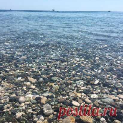 Прозрачность моря в Абхазии просто зашкаливает.