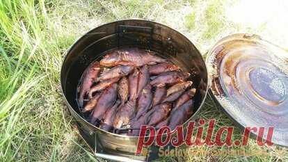 Копчение рыбы на рыбалке: быстро, просто, вкусно. Мой отчет