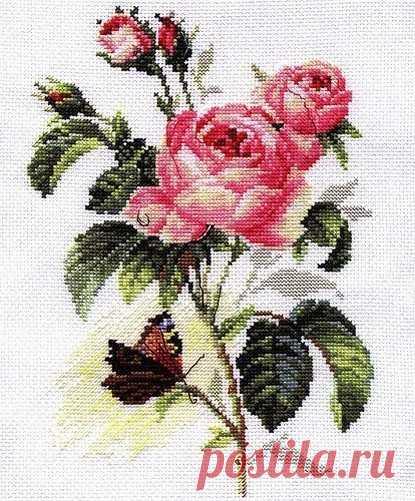 Вышивка прекрасной розы