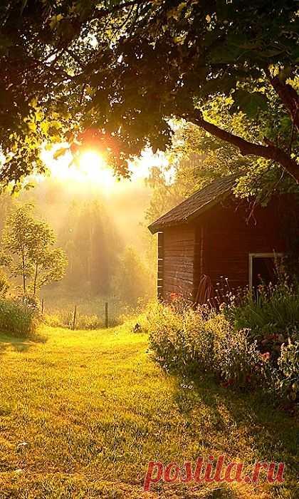 Country Sunbeams - the Source: anhthiennhien.vietcool.net  \u000d\u000a  Pinterest • World catalog of ideas