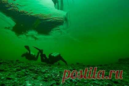 В Горном Алтае туристам предложат подводный маршрут по дну Телецкого озера. В Горном Алтае туристам предложат подводную экскурсию, во время которой они смогут пройти по дну Телецкого озера. Погрузиться на дно озера можно будет со специалистами Алтайского биосферного заповедника. Туристов будут сопровождать на протяжении всего маршрута, длина которого составляет около 200 метров.