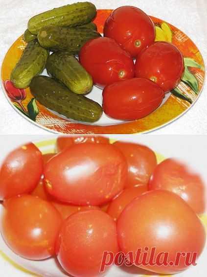 Квашеные огурцы и помидоры без соли | Сыроедение рецепты