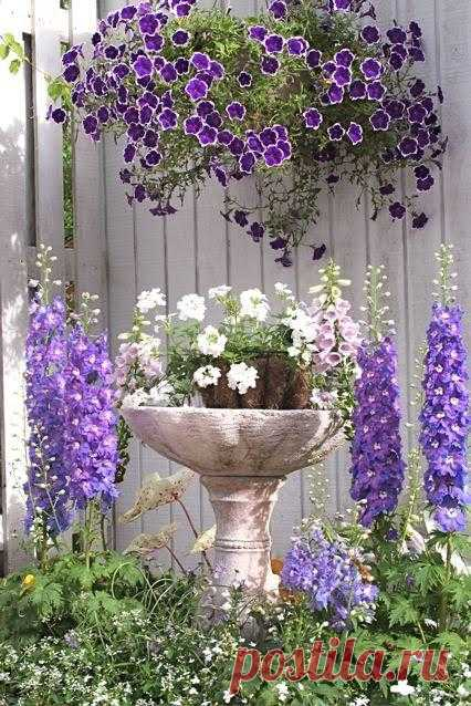 Цветы в декоративном фонтанчике