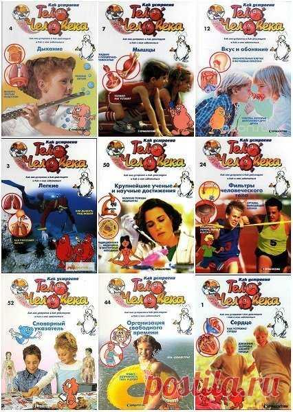 Как устроено тело человека - 52 выпуска (2007-2008) DJVU Посетители сайта SoftLabirint.Com – Для Вас Серия - «Как устроено тело человека» - это полное руководство для детей 4-11 лет по изучению внутреннего строения человеческого тела. Полная коллекция содержат 52 выпуска, в ней дети не только ознакомятся с анатомией, но и соберут две объемные модели