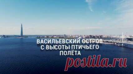 Васильевский остров с высоты птичьего полёта