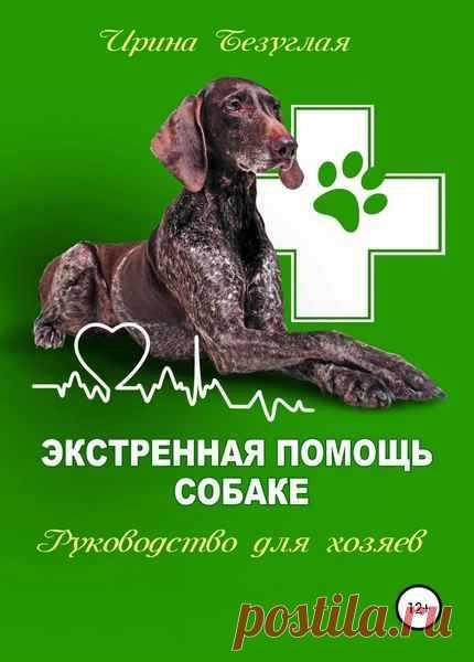 Экстренная помощь собаке. Руководство для хозяина (2019) pdf