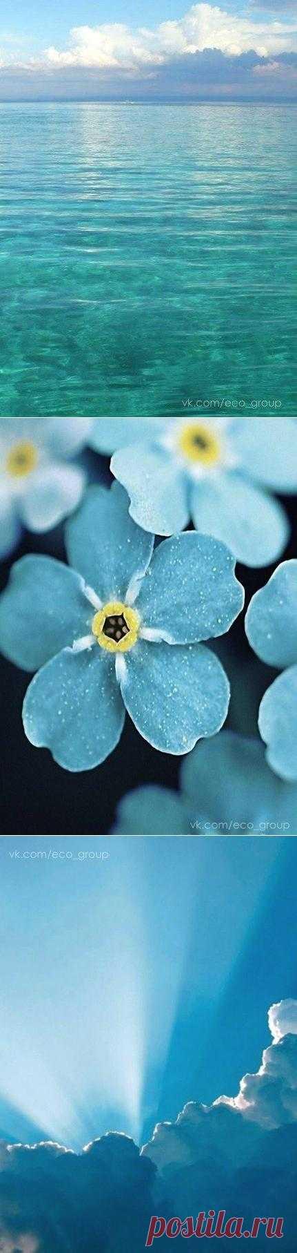 Вдохновляемся цветом: бирюза