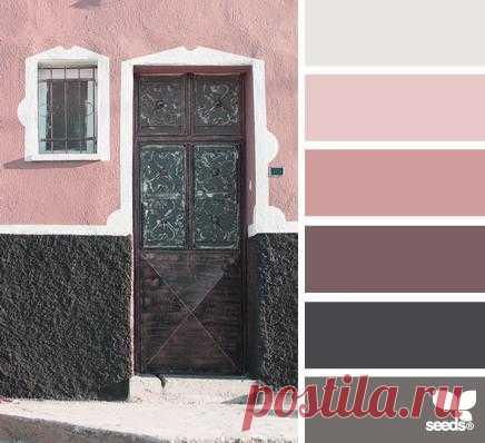 Design Seeds®   find your palette