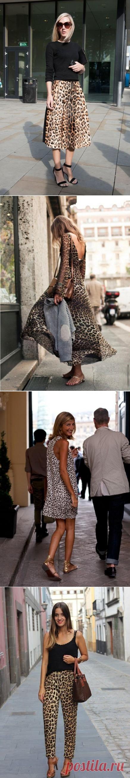 Леопардовый принт в образах — Модно / Nemodno