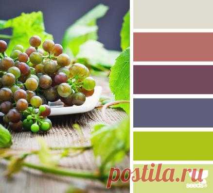 Design Seeds® | find your palette