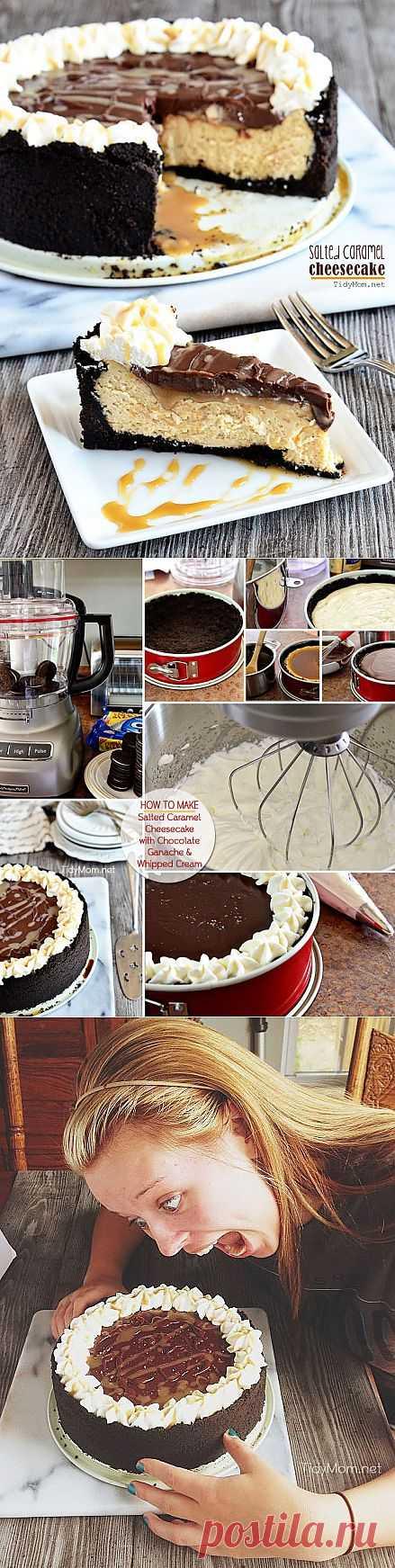 Salted Caramel Cheesecake Recipe | TidyMom