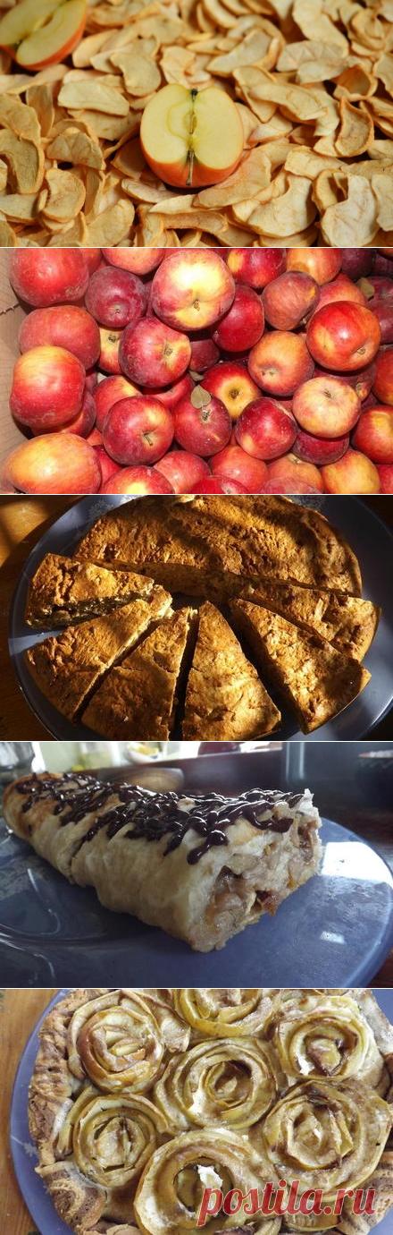 Что приготовить из яблок? Любимые рецепты | Еда и кулинария