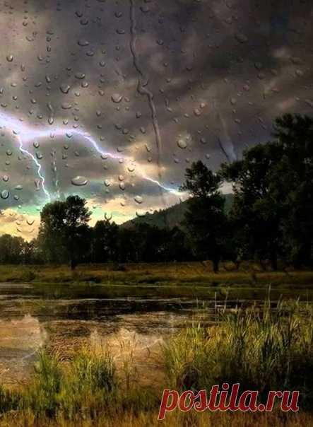 Утешает только самое простое. Вода, дыхание, вечерний дождь...  © Эрих Мария Ремарк,