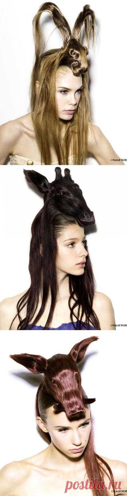 15 зверинных причёсок: интересно