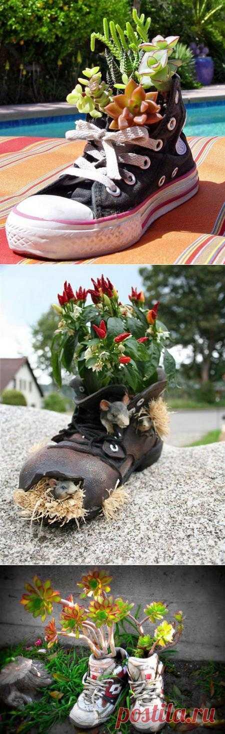Необычные цветочные контейнеры из старой обуви