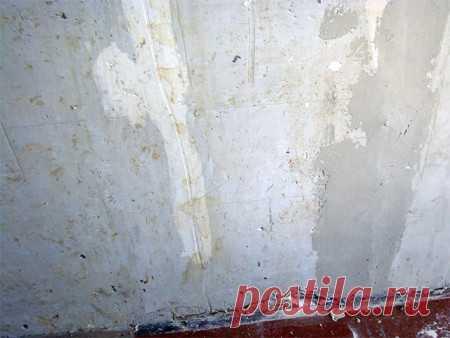 Подготовка стен к поклейке обоев: правильная последовательность действий