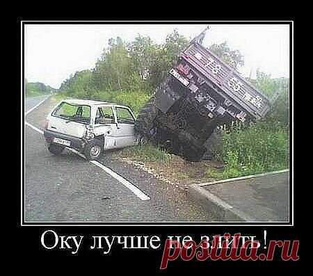Подборка смешных фото и рисунков | Музыка ветра | Яндекс Дзен