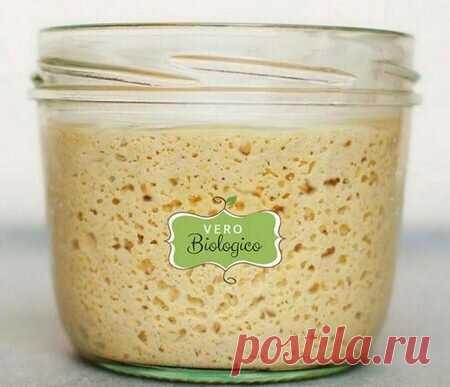 Закваска для хлеба по Калвелю | ЛЮБОВЬ ПРУСИК | Яндекс Дзен