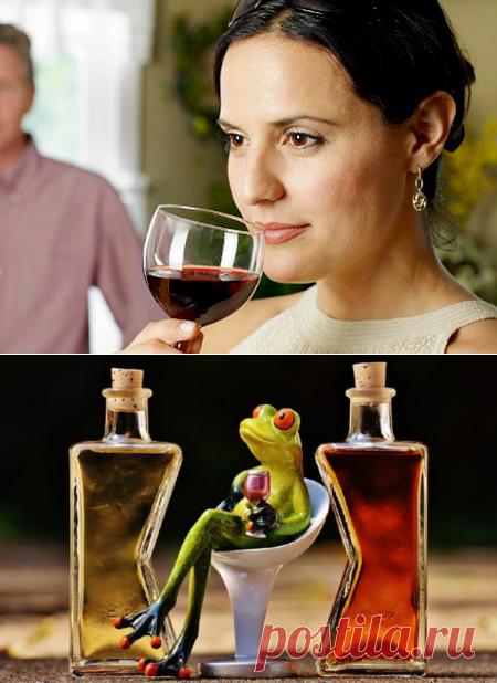 Губит людей не пиво, или Алкоголь способен повысить иммунитет человека