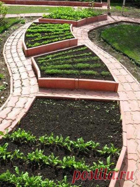 Огородные грядки как украшение