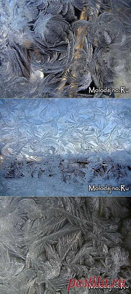 Мороз рисует на стекле » Молодежный сайт Molodejno.Ru