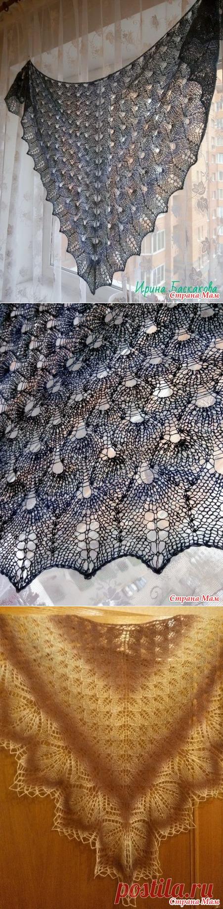 дома шаль крылья голубки фото солистом оркестра