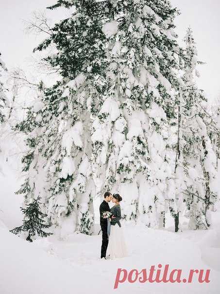 Snow whisper 💎 Фото: Сергей Шульга Флористика: D&K Flowers House Свадебная флористика Макияж и причёска: Juju Shevchenko