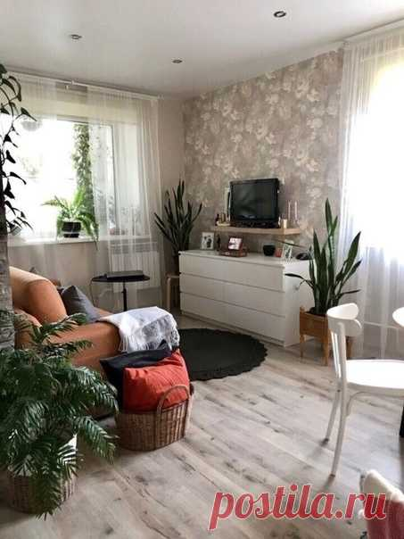 Квартира, в которой любят растения)