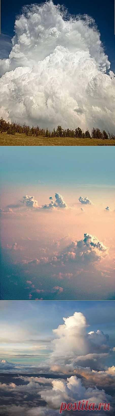 Облака белогривые лошадки!