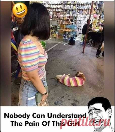 In this picture the funny scene of the girl is present in which what shirt she is with also same shirt a cat or a dog wearing in front of him