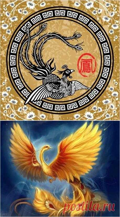 феникс, петух и орел