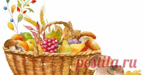 Продажа собранных в лесу грибов и ягод освобождается от НДФЛ Аналогичное правило распространяется на орехи и дикорастущие плоды. При этом реализация собранных лекарственных трав под освобождение не подпадает.