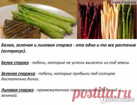 Замороженные овощи Сет-Фуршет Овощи быстро замороженные Спаржа/Green asparagus - «Замороженная спаржа из Ашана всего за 123 рубля! Что такое СПАРЖА, как ее приготовить? Простые, быстрые и вкусные РЕЦЕПТЫ. Чем отличаются зеленая, белая, лиловая спаржа, спаржевая фасоль и корейская соевая спаржа? Витамины в замороженной спарже.» | Отзывы покупателей