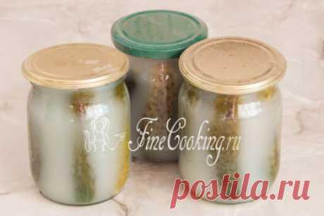 Los pepinos fermentados en los bancos para el invierno - la receta de la foto
