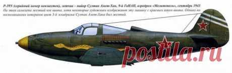 SECOND WORLD WAR DUEL: THE GERMAN EXPERT AGAINST THE RUSSIAN PILOT